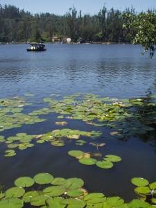 Kodaikanal_lake